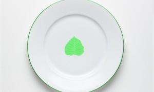 Diner plate Leaves (26cm)